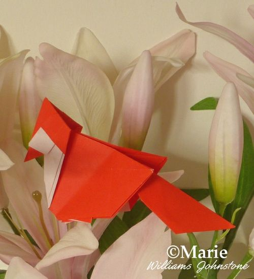 Paper Folded Cardinal Bird Design