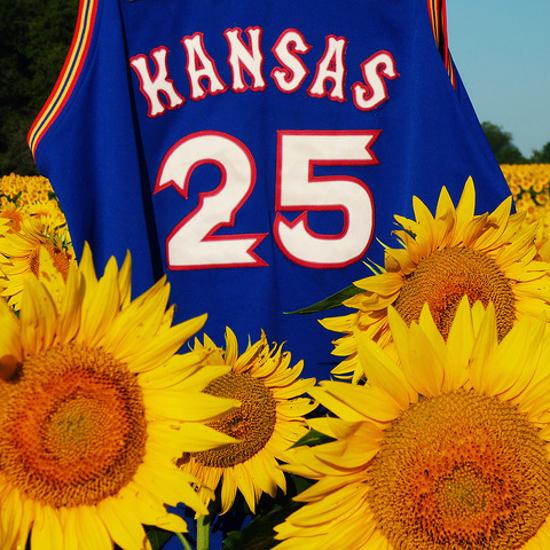 University of Kansas jersey in a field of Sunflowers sunflower plants