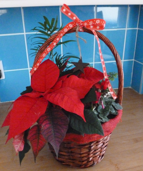 red poinsettia flower gift basket festive Christmas gift idea