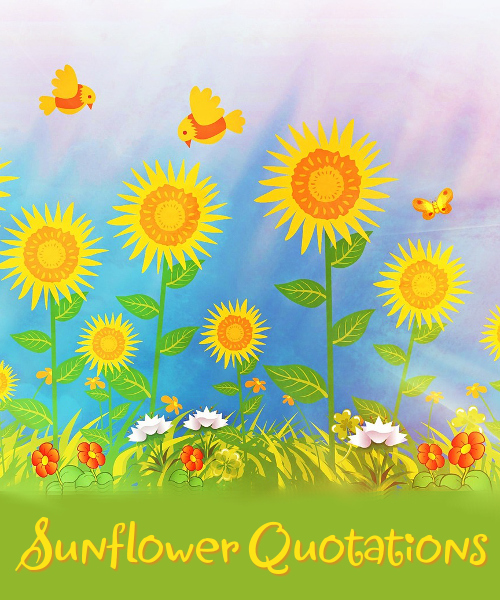 Sunflower quotations, quotes, sayings and sentiments page full of positive happy and uplifting thoughts on the sun flower flowers