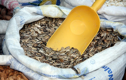 Seeds sunflower black scoop sack