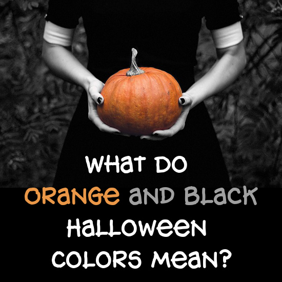 Bright orange Pumpkin in black and white photo. Orange and black Halloween colors.