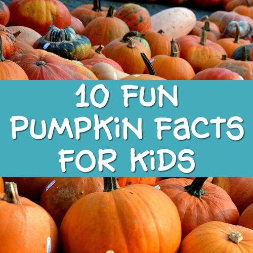 10 fun fact pumpkins kids pumpkin facts and trivia
