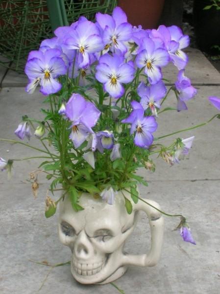 Skull Mug Flower Vase