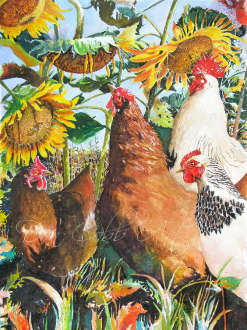 Chickens Rooster Sunflowers Art Print Sunflower Chickens 11 x 14 and 13 x 19 Signed and Numbered