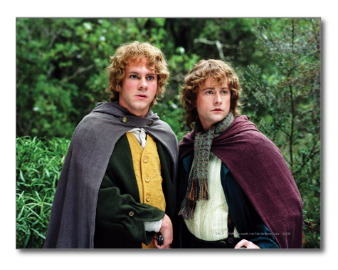 Merry and Pippin Lord of the Rings hobbit postcard zazzle lotr