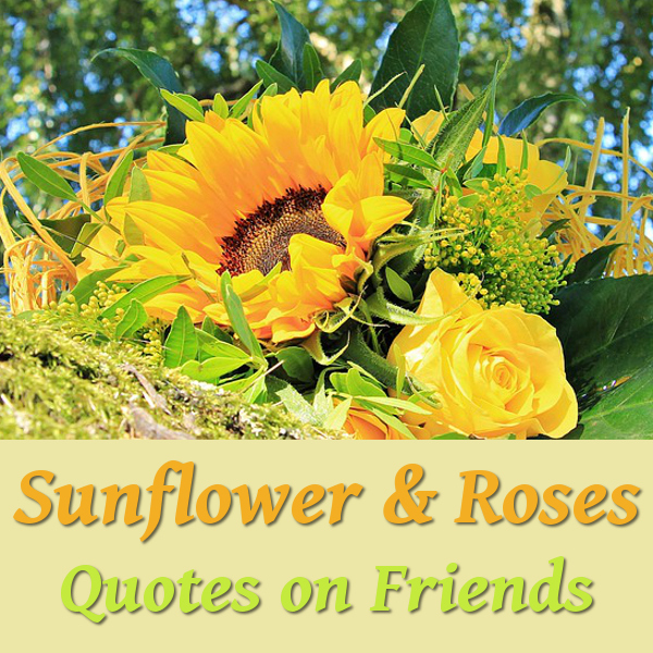 Sunflower and Roses Quotes on Friends Quotations Sentiments Sayings Sun Flower